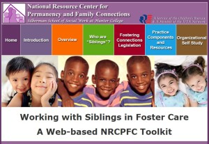 Siblings in Foster Care Tool Kit